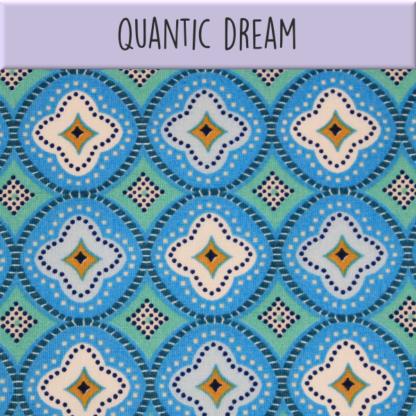 Coton Quantic dream