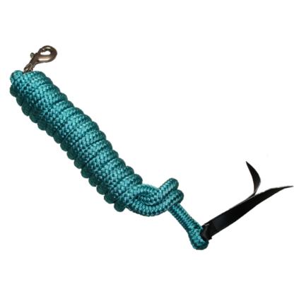 Longe Turquoise