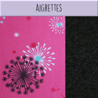 Aigrettes