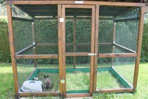 Abri extérieur pour lapin